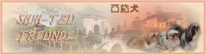 Shih Tzu Forum - Shih Tzu Freunde