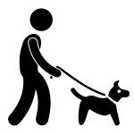 Mit Shih Tzu spazieren gehen