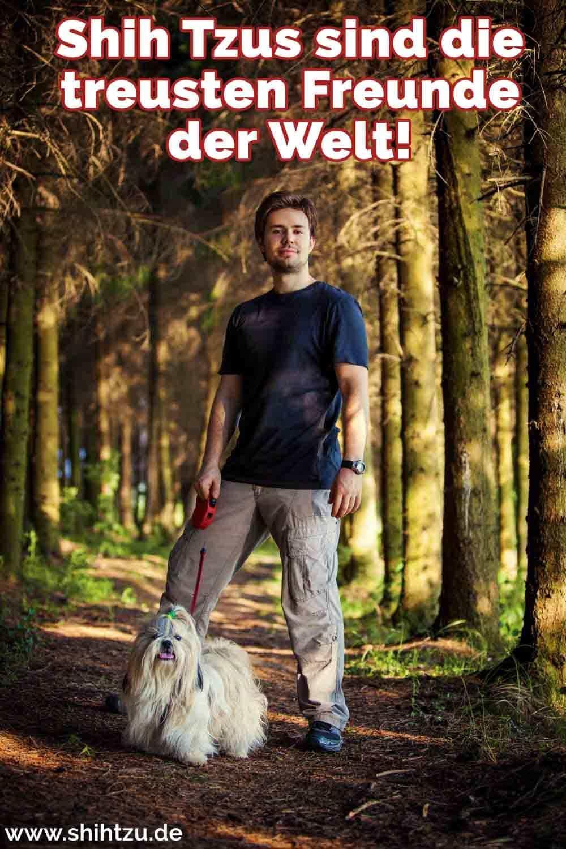 Ein Mann und seine Shih Tzu in dem Wald