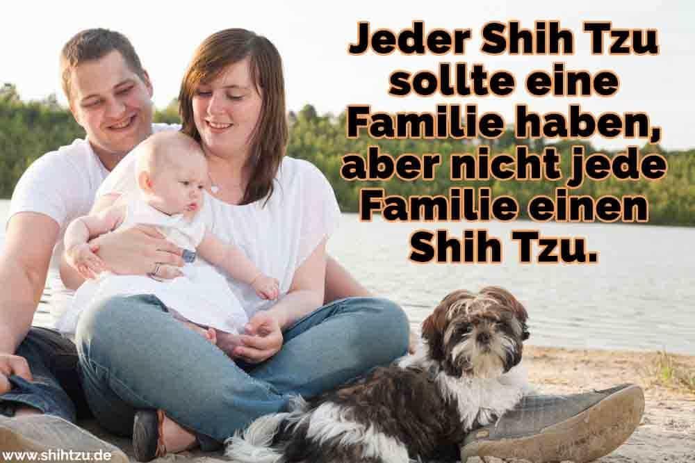 Eine Familie und Ihr Shih Tzu am See