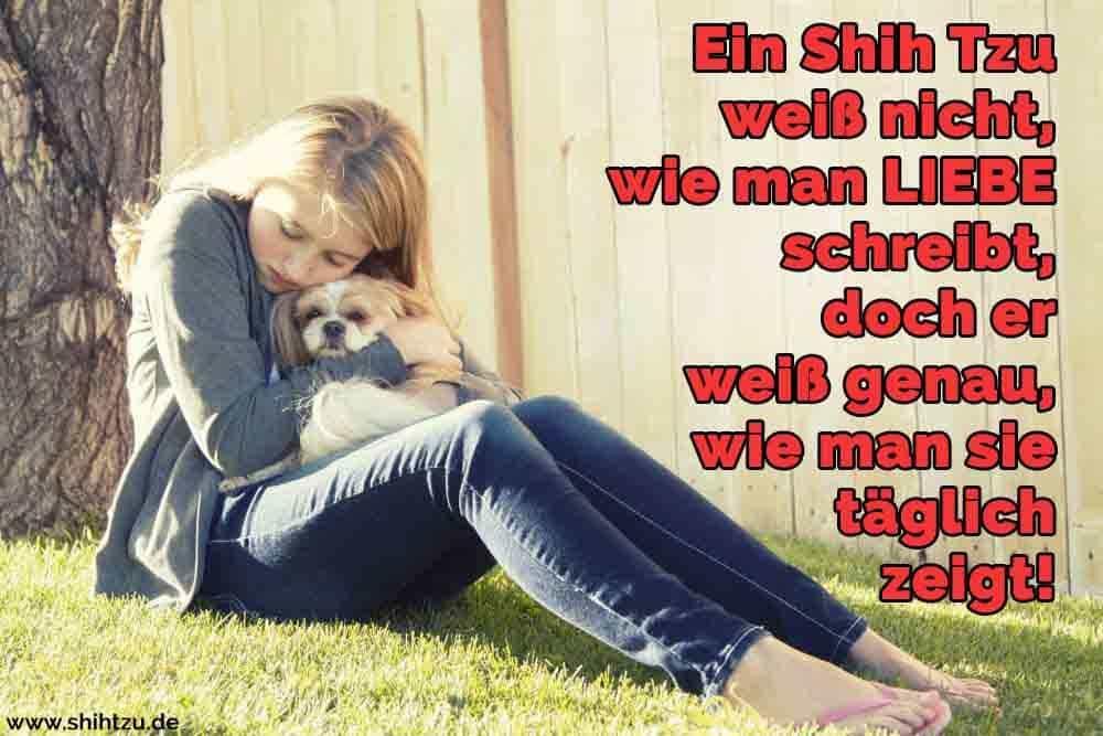Ein Mädchen umarmt ihren Shih Tzu