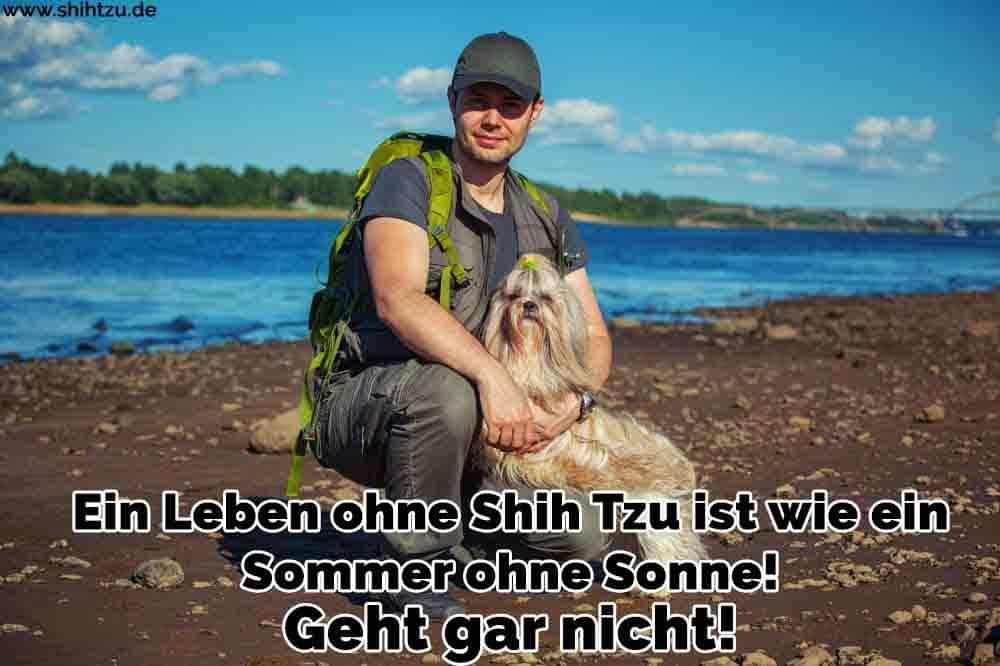 Ein Mann und seine Shih Tzu in See
