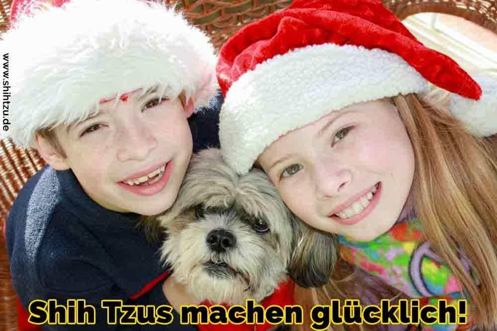 Zwei Kinder feiern Weihnachten mit Ihrem Shih Tzu