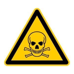 Shih Tzu Vergiftung