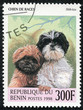 stamp printed in BENIN,shows a dog